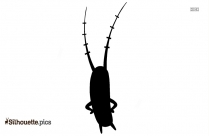 Spongebob Plankton Silhouette Image And Vector