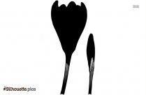 Flower Bud Silhouette Picture
