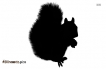 Flying Squirrel Silhouette Image