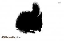 Squirrel Picture Silhouette