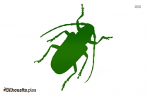 Stag Beetle Silhouette Vector And Graphics