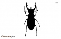 Grasshopper Beetle Silhouette Drawing
