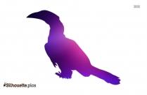 Black Crowned Night Heron Bird Silhouette