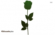 Stem Of A Rose Plant Silhouette