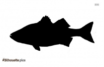 Fish Drawing Silhouette Clipart