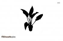 Mistletoe Plant Silhouette