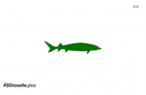 Alligator Gar Fish Silhouette Image