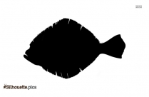 Flounder Fish Picture Silhouette