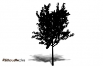 Summer Tree Silhouette Free Vector Art