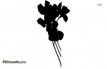 Hawaiian Flower Drawing Silhouette Picture