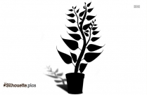 Cute Plant Silhouette Image