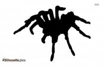 Halloween Spider Silhouette Icon