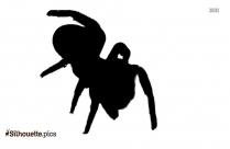 Tarantula Spider Silhouette Background