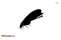 Termites Silhouette Illustration