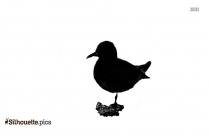Avon Ugly Bird Silhouette