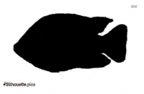 Snook Silhouette Illustration