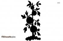 Tomato Plant Vector Silhouette