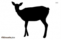 Deer Silhouette Image And Vector Illustration