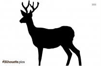 Transparent Deer Silhouette Background