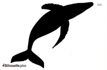 Black And White Minke Whale Silhouette