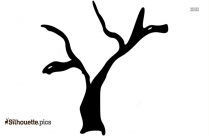 Walnut Tree Silhouette Art