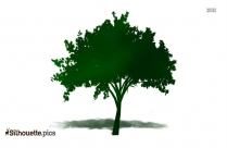 Tree With Birds Clipart Silhouette