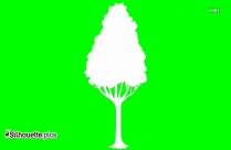 Tree Png Silhouette