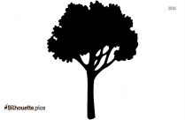 Black And White Spring Tree Silhouette