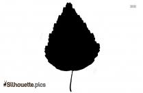 Palm Tree Silhouette Transparent