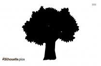 Tree With Leaves Silhouette Background