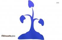 Verbena Plant Silhouette Picture