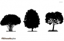 Cartoon Tree Silhouette Vector