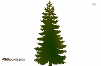Christmas Pine Tree Silhouette Illustration