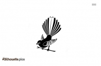 Tumbler Pigeons Silhouette Image