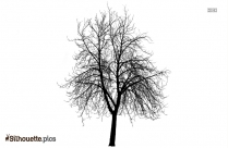 Tree Vector Silhouette Illustration Background