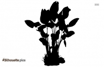 Tropical Plant Silhouette Vector Image