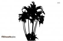 Palm Tree Symbol Silhouette