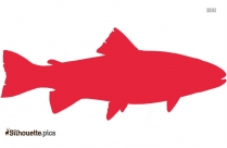 Parrotfish Vector Drawing Silhouette