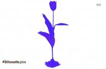 Hydrangea Silhouette Illustration