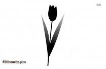 Tulip Flower Silhouette Vector Image