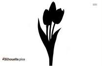 Black Tulip Flower Silhouette Image