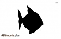 Funny Fish Silhouette Image