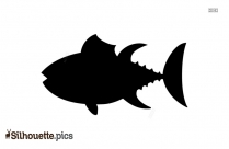 Cartoon Fish Clipart Silhouette Image