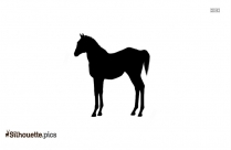 Cute Horse Pony Silhouette