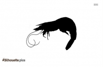 Vector Prawn Fish Silhouette Image