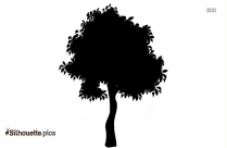 Bushes Silhouette Drawing