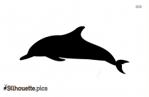 Killer Whale Silhouette Image