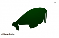 Cartoon Walrus Silhouette Image And Vector