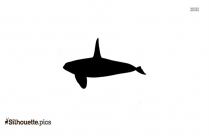 Sperm Whale Fisheries Silhouette