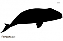 Sperm Whale Mojo Vector Silhouette Image